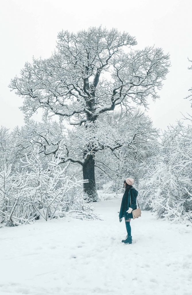 19 Things to Know Before Moving to Sweden 8